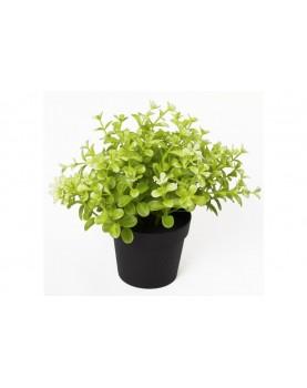 Изкуствено растение Чемшир в саксия
